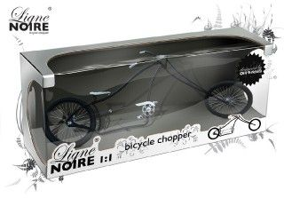 Model Bike in Box